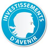 Investissement d'Avenir logo