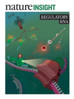 Nature Insight February 2012 Regulatory RNA